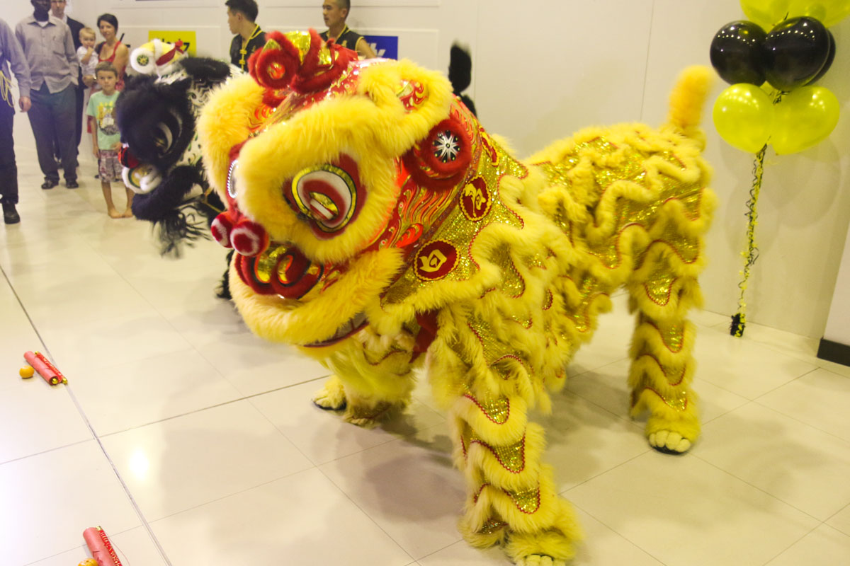 Chinese Dragon dance in the Arrivals area of Terminal 1 at Perth Airport to celebrate the arrival of the first service from Singapore by Scoot at Perth Airport - Thursday 12 December 2013.