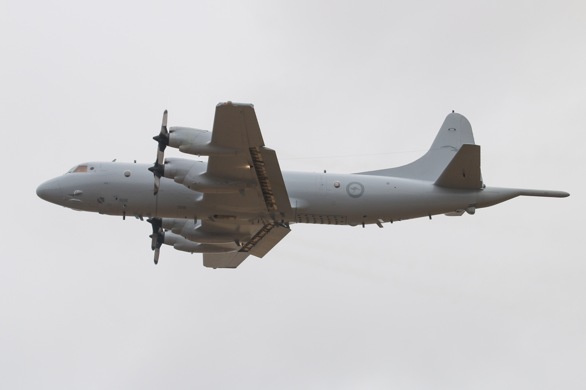 A9-659 Lockheed AP-3C Orion (MSN 285D-5784) of RAAF, 11 Squadron, based at RAAF Edinburgh, at RAAF Pearce - Sun 30 March 2014. Photo © David Eyre