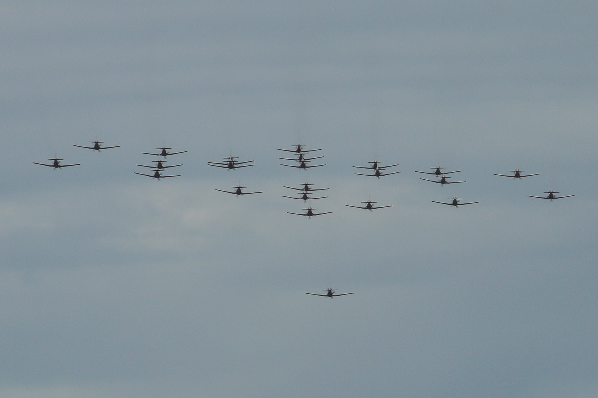 23 Pilatus PC-9/A aircraft of 2 Flying Training School (2FTS), RAAF, based at Pearce, WA, in Thunderbird formation over the northern suburbs of Perth – Wed 3 September 2014. Aircraft in the formation are A23-001, A23-002, A23-003, A23-004, A23-009, A23-010, A23-011, A23-013, A23-015, A23-016 (?), A23-017, A23-019, A23-021, A23-023(?), A23-024, A23-026, A23-034, A23-040, A23-044, A23-047, A23-049, A23-056, A23-065. The 'Thunderbird' formation was a salute to 11 Royal Australian Air Force (RAAF) students and one Royal Australian Navy (RAN) student of number 236 Pilots Course who graduated as military aviators in a ceremony held the next day, on Thursday 4 September 2014 at RAAF Base Pearce, after their 38-week course with 2 Flying Training School (2FTS). The Thunderbird formation is also treated as a training activity for the student pilots. After taking off from RAAF Pearce, the aircraft gathered into their formation to the west of Gingin, before heading south west to pass over Rottnest Island at approximately 3.54pm, heading east over Fremantle at approximately 3.57pm, the follow the Swan River to pass in front of Perth city at approximately 4.00pm. They are seen here over the north eastern suburbs at 4.13pm before passing over RAAF Pearce for a flypast at 4:14pm. Photo © David Eyre