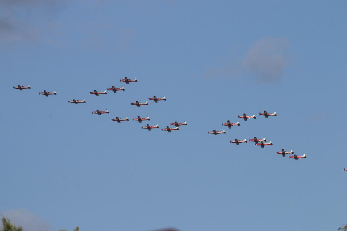 23 Pilatus PC-9/A aircraft of 2 Flying Training School (2FTS), RAAF, based at Pearce, WA, in Thunderbird formation over the northern suburbs of Perth – Wed 3 December 2014. There is also one chase plane at extreme right. The 'Thunderbird' formation was a salute to six Royal Australian Air Force (RAAF) students and one Royal Australian Navy (RAN) student of number 237 Pilots Course who graduated as military aviators in a ceremony held the next day, on Thursday 4 December 2014 at RAAF Base Pearce, after their 38-week course with 2 Flying Training School (2FTS). The Thunderbird formation is also treated as a training activity for the student pilots. After taking off from RAAF Pearce, they gathered into their formation west of Gingin, then headed south west to pass over Rottnest Island at approximately 3.54pm, over Fremantle at approximately 3.57pm, then up the Swan River to pass in front of Perth city at approximately 4.00pm. They are seen here over the north eastern suburbs at 4.10pm before passing over RAAF Pearce for a flypast at 4:12pm. Photo © David Eyre