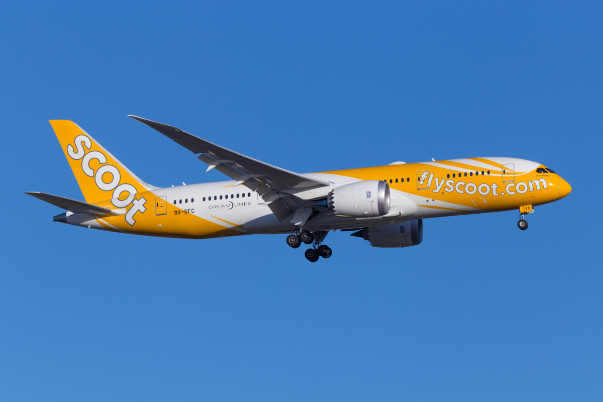 9V-OFC Boeing 787-8 Dreamliner (MSN 37120/349) of Scoot, named 'Scootalicious', at Perth Airport - Mon 6 December 2015. First visit to Perth. Operating the Perth service instead of the usual 787-9 as flight TZ8 from Singapore at 6:06pm, seen here on approach to runway 21. Photo © Marcus Graff