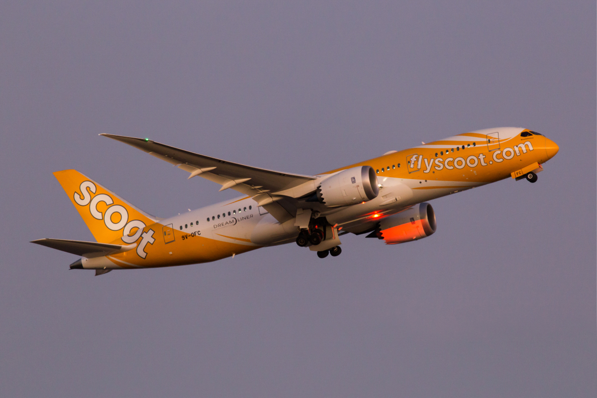 9V-OFC Boeing 787-8 Dreamliner (MSN 37120/349) of Scoot, named 'Scootalicious', at Perth Airport - Mon 6 December 2015. First visit to Perth. Operating the Perth service instead of the usual 787-9. Flight TZ7 to Singapore is seen here climbing after take-off from runway 21 at 7:28pm. Photo © Marcus Graff