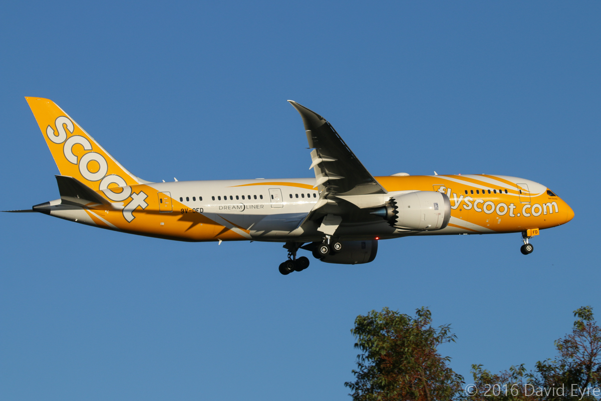9V-OFD Boeing 787-8 DreamLiner (MSN 37121/375) named 'Goin' Scootin'' of Scoot, at Perth Airport – Wed 24 February 2016. First visit to Perth by 9V-OFD, seen here on final approach to runway 21 at 6:12 pm as flight TZ8 from Singapore. Photo © David Eyre
