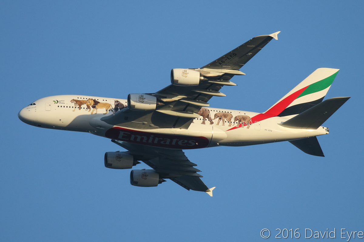 A6-EEQ Airbus A380-861 (MSN 141) of Emirates, wearing 'United for Wildlife' livery, over the northern suburbs of Perth – Fri 29 April 2016. First visit to Perth wearing this special livery, in support of United for Wildlife, a global collaboration that unites the efforts of the world's leading wildlife charities in the fight against the illegal wildlife trade. Flight EK420 from Dubai, heading northeast along the 9DME arc at 5:15pm before approaching Perth Airport's runway 21. Photo © David Eyre