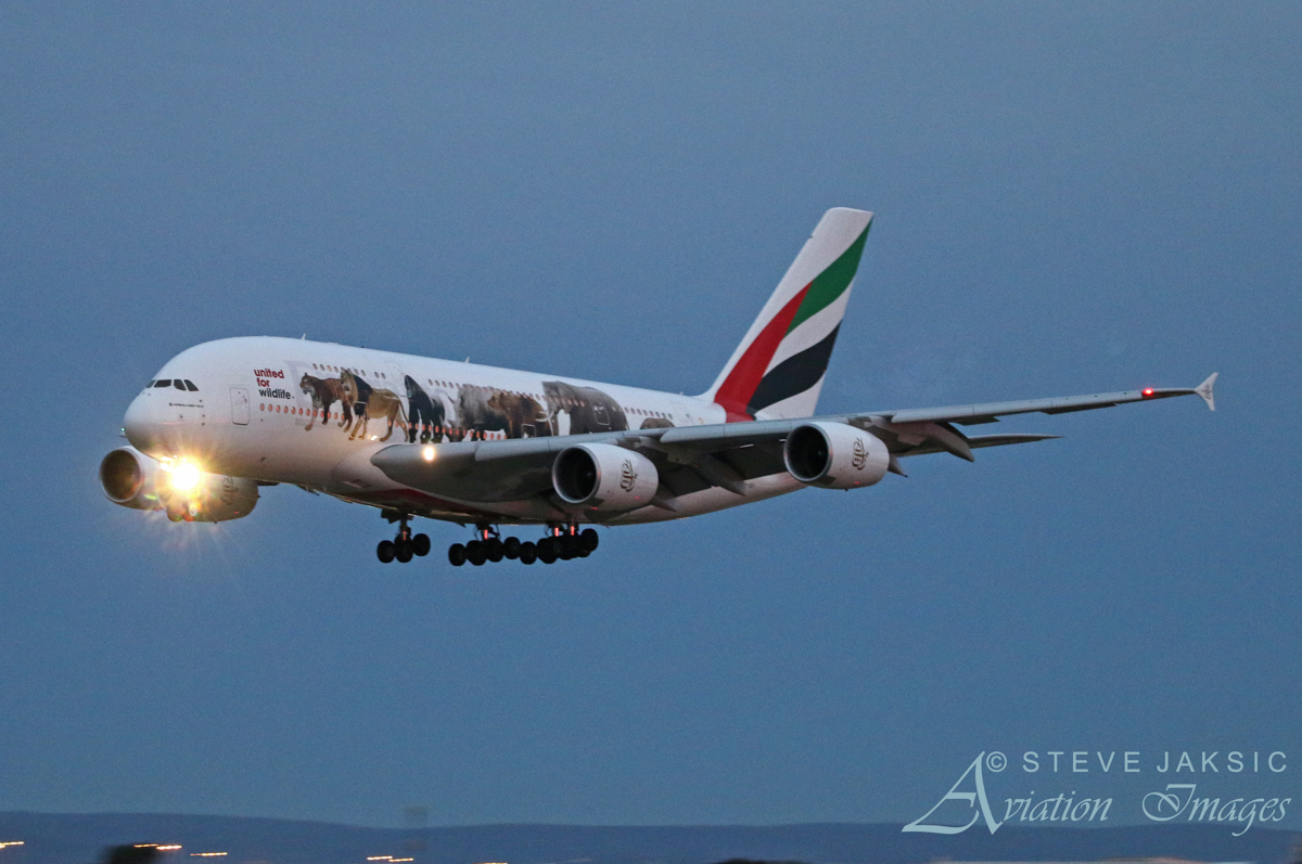 A6-EEI Airbus A380-861 (MSN 123) of Emirates, in United for Wildlife livery, at Perth Airport – Sat 11 June 2016. First visit to Perth. This aircraft wears a special livery in support of United for Wildlife, a global collaboration that unites the efforts of the world's leading wildlife charities in the fight against the illegal wildlife trade. Flight EK420 from Dubai, landing on runway 03 at 5:34 pm. Photo © Steve Jaksic