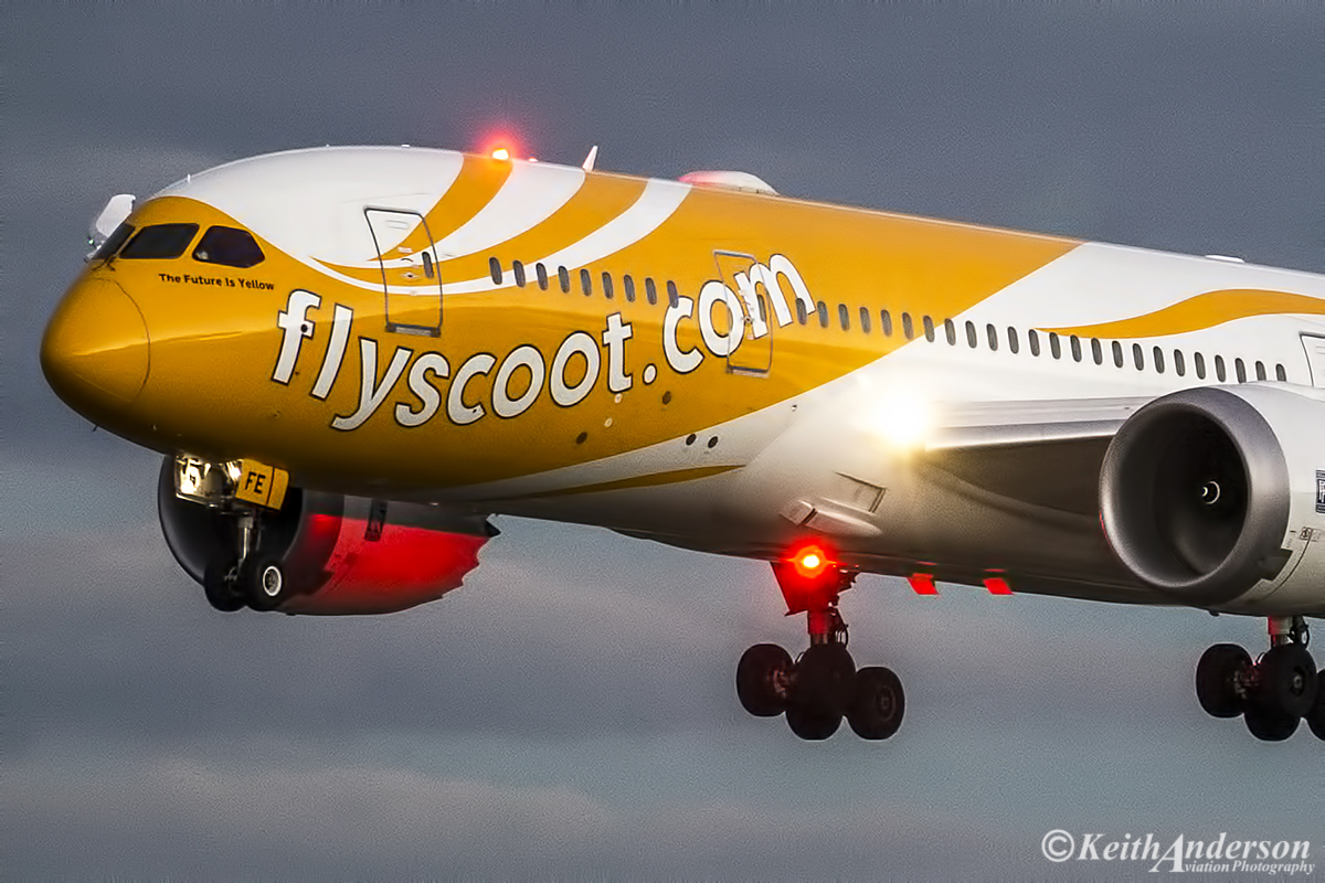 "9V-OFE Boeing 787-8 DreamLiner (MSN 37122) named ""The Future is Yellow"" of Scoot at Perth Airport – 20 July 2016."