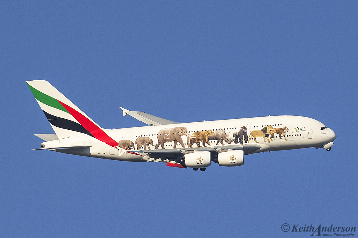 A6-EOM Airbus A380-861 (MSN 187) of Emirates, in United for Wildlife livery, over the Swan Valley – 18 October 2016.