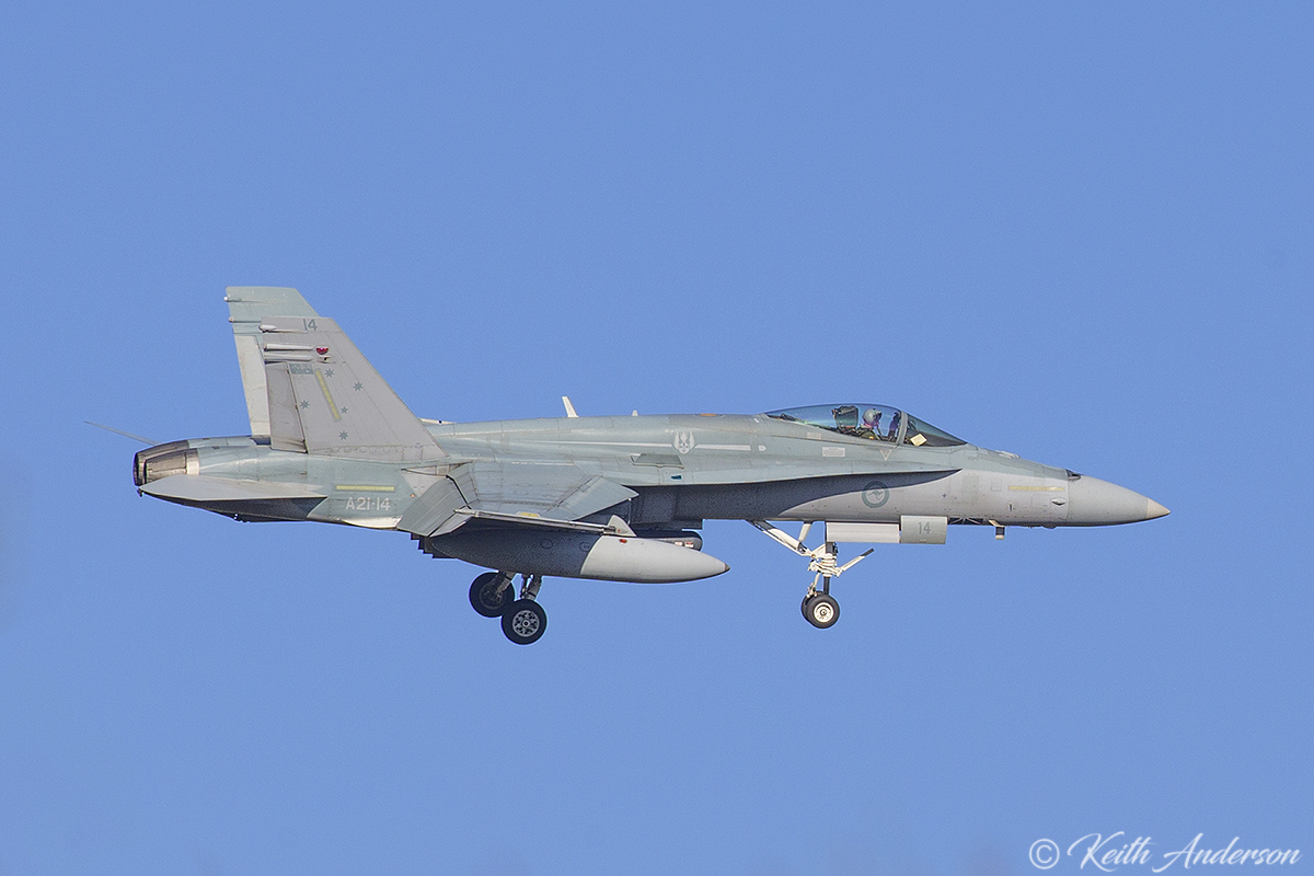 A21-14 McDonnell-Douglas F/A-18A Hornet (MSN 353/AF-14) of 75 Squadron, RAAF, in 3 Squadron markings, at RAAF Pearce - Mon 6 March 2017.