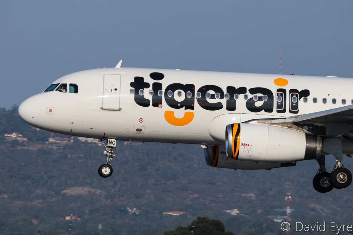 VH-VNC Airbus A320-232 (MSN 3275) of Tigerair Australia, at Perth Airport – Fri 31 March 2017. Close up of forward fuselage during landing on runway 03 at 4:28pm as TT413 from Melbourne. Photo © David Eyre